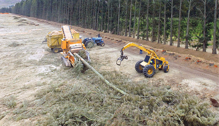 Become an owner of a Bandit wood chipper | Global Africa Network