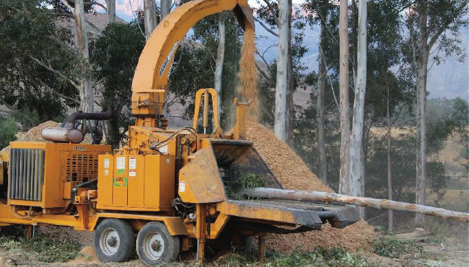 SA company at the forefront of the development of biomass